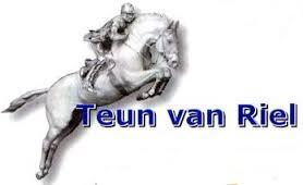 logo_Teun_van_Riel